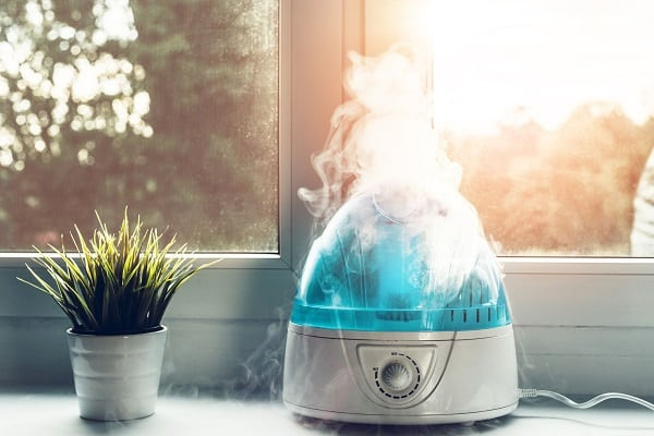 A Humidifier Comes In Handy